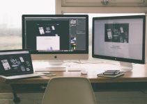 Web Designing Principles